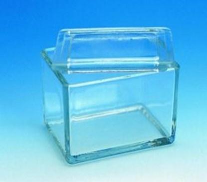 Slika GLASS STAINING DISH,105X85X70 MM