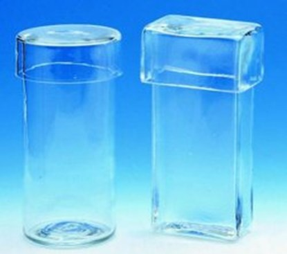 Slika STAINING CYLINDERS,SODA GLASS,WITH COVER