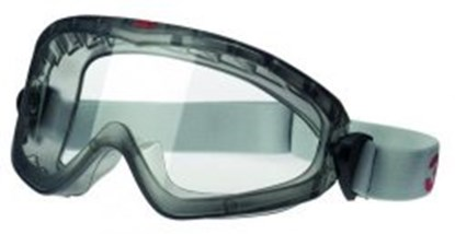 Slika Panoramic Eyeshield  2890 and 2890SA