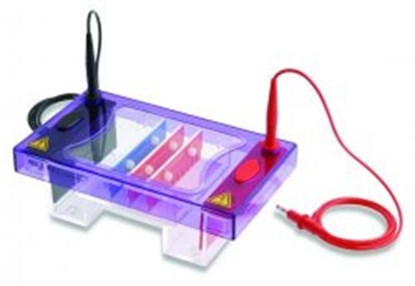 Slika Accessories for Gel Electrophoresis Tank MultiSUB Midi