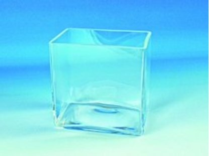 Slika Aquaria, clear glass