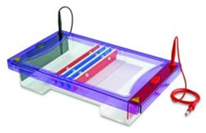 Slika Accessories for Gel Electrophoresis Tank MultiSUB Maxi