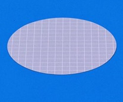 Slika MEMBRANE FILTER 47 MM, 0.65 uM, GREY