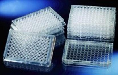 Slika 96 Well Immuno Plates, PS, flat bottom