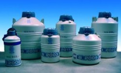 Slika Long term cryogenic storage tanks, B 2000 series